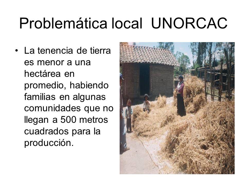 Problemática local UNORCAC La tenencia de tierra es menor a una hectárea en promedio, habiendo familias en algunas comunidades que no llegan a 500 met
