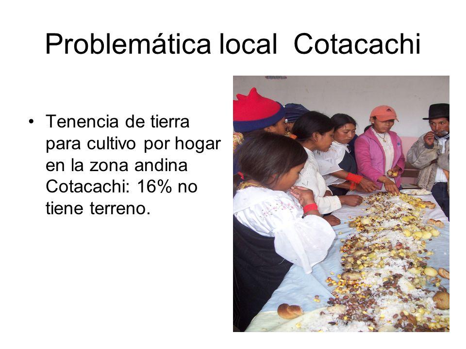 Problemática local Cotacachi Tenencia de tierra para cultivo por hogar en la zona andina Cotacachi: 16% no tiene terreno.