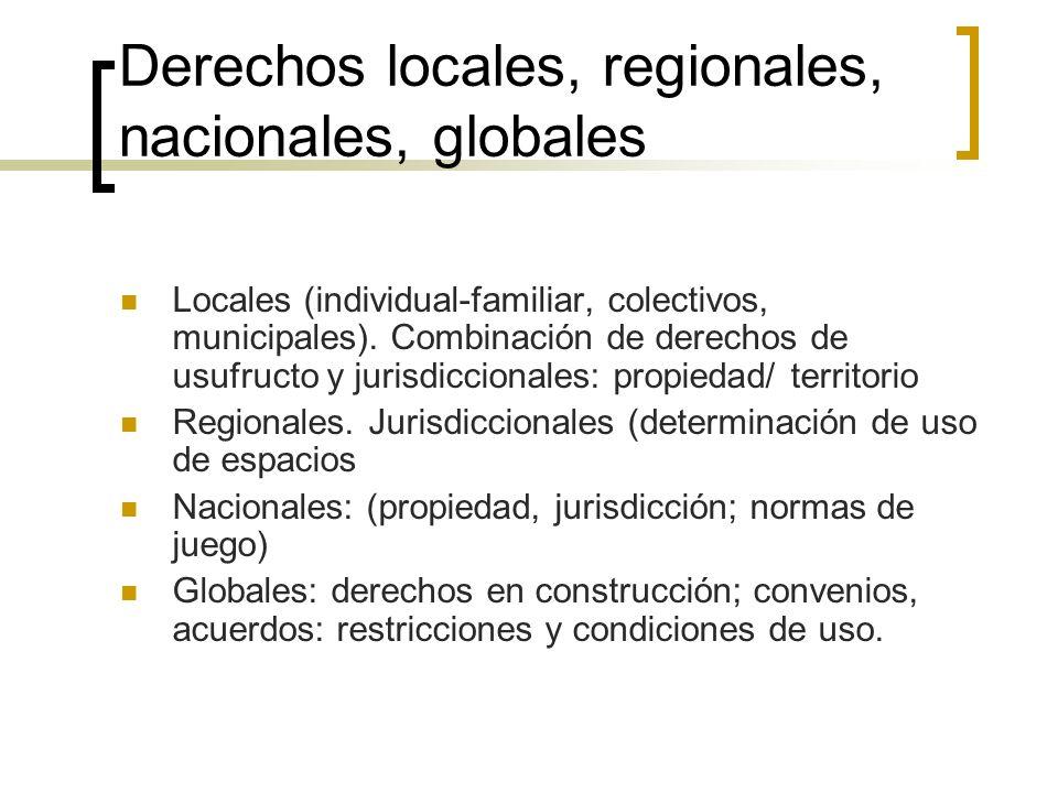 Derechos locales, regionales, nacionales, globales Locales (individual-familiar, colectivos, municipales).