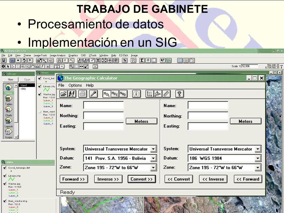 TRABAJO DE GABINETE Procesamiento de datos Implementación en un SIG