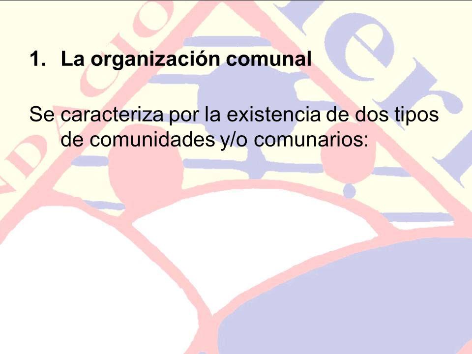 1.La organización comunal Se caracteriza por la existencia de dos tipos de comunidades y/o comunarios: