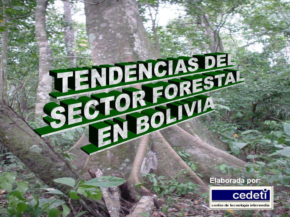 Antecedentes Bolivia posee una riqueza forestal de aproximadamente 53.4 millones de hectáreas (alrededor del 48% de su superficie) El potencial forestal, es de 24 millones de metros cúbicos de madera tropical, provenientes de 14.4 millones de hectáreas de tierras bajas (OIMT 1996) Aprovechando este potencial, Bolivia estaría entre los cuatro productores de madera tropical, junto a Brasil, Malasia e Indonesia (WRI 1998)