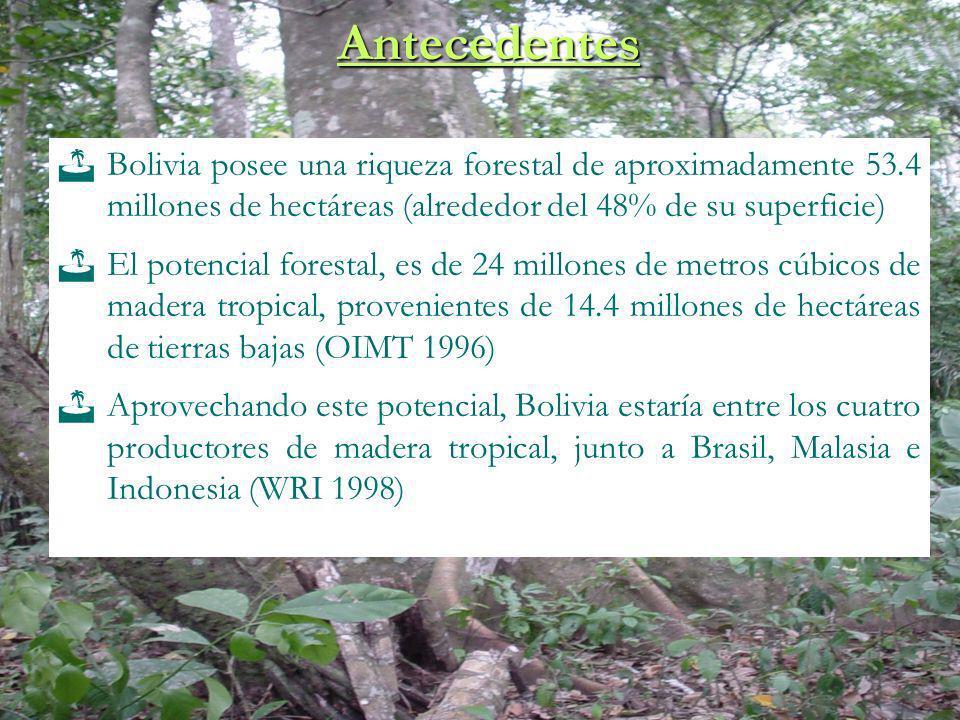 Antecedentes Bolivia posee una riqueza forestal de aproximadamente 53.4 millones de hectáreas (alrededor del 48% de su superficie) El potencial forest