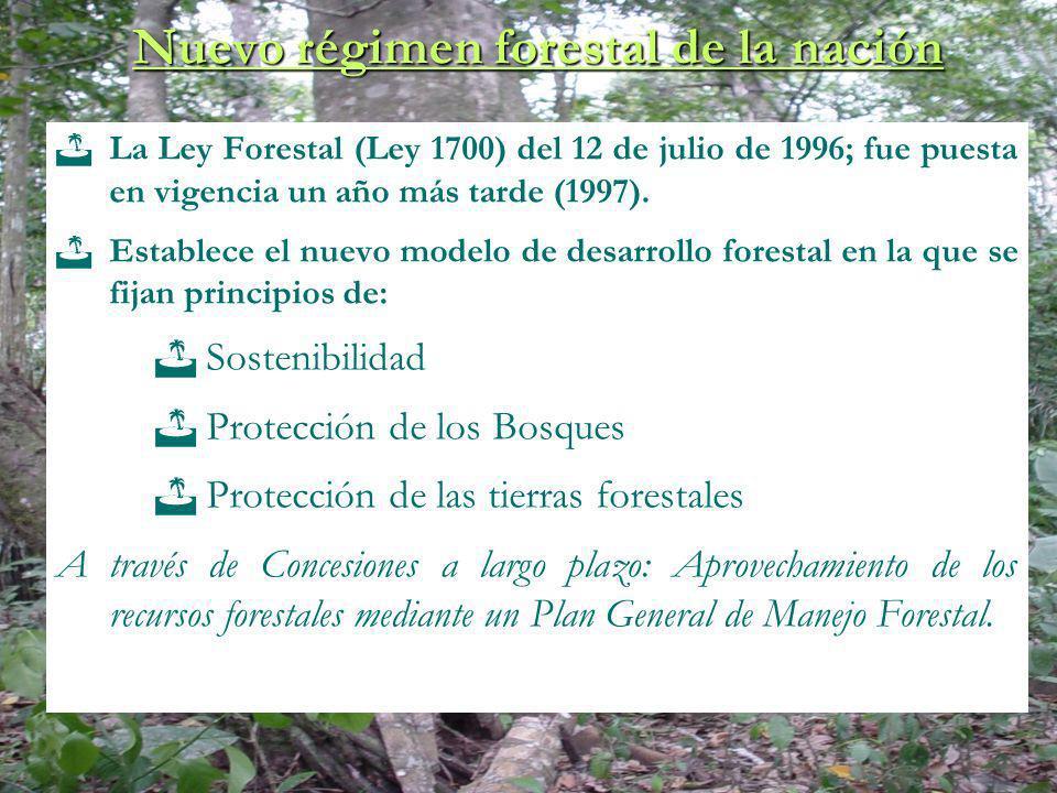Tipos de derechos forestales : Concesión Forestal en Tierras Fiscales, que puede ser otorgadas a Empresas Forestales y Agrupaciones Sociales del Lugar (ASL - ARFM) Autorización de aprovechamiento en tierras de propiedad privada.