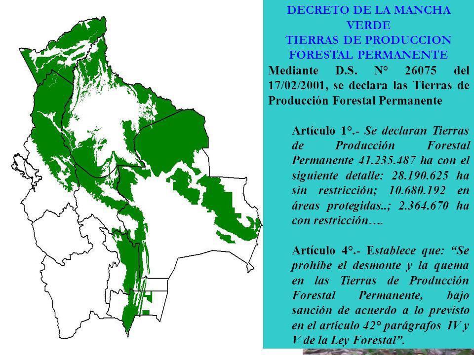 DECRETO DE LA MANCHA VERDE TIERRAS DE PRODUCCION FORESTAL PERMANENTE Mediante D.S. N° 26075 del 17/02/2001, se declara las Tierras de Producción Fores