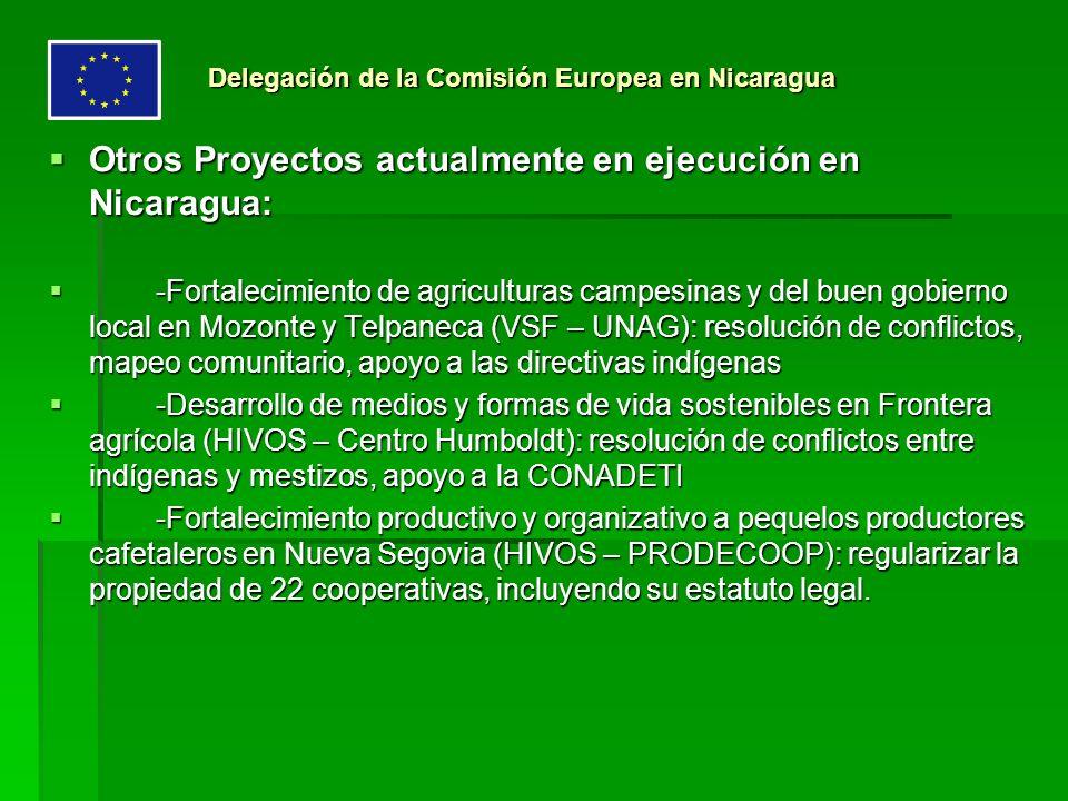 Otros Proyectos actualmente en ejecución en Nicaragua: Otros Proyectos actualmente en ejecución en Nicaragua: -Fortalecimiento de agriculturas campesi