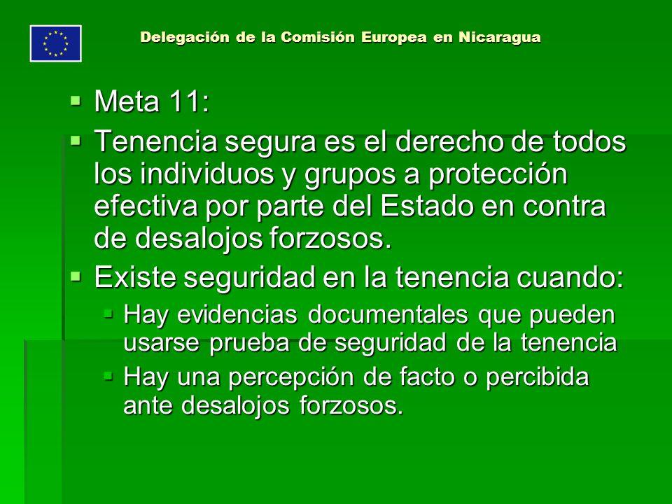 Delegación de la Comisión Europea en Nicaragua Meta 11: Meta 11: Tenencia segura es el derecho de todos los individuos y grupos a protección efectiva por parte del Estado en contra de desalojos forzosos.