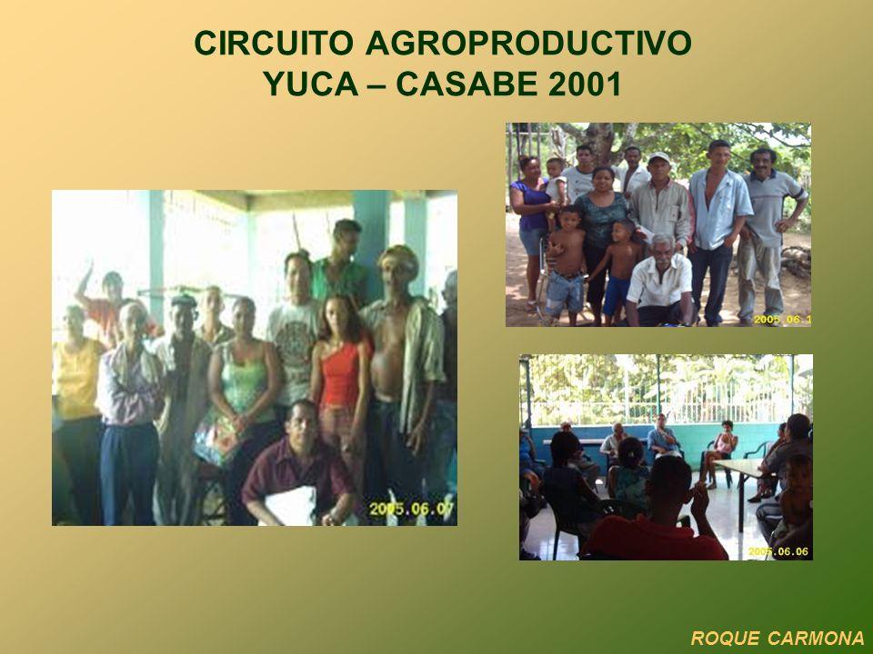 ROQUE CARMONA CIRCUITO AGROPRODUCTIVO YUCA – CASABE 2001