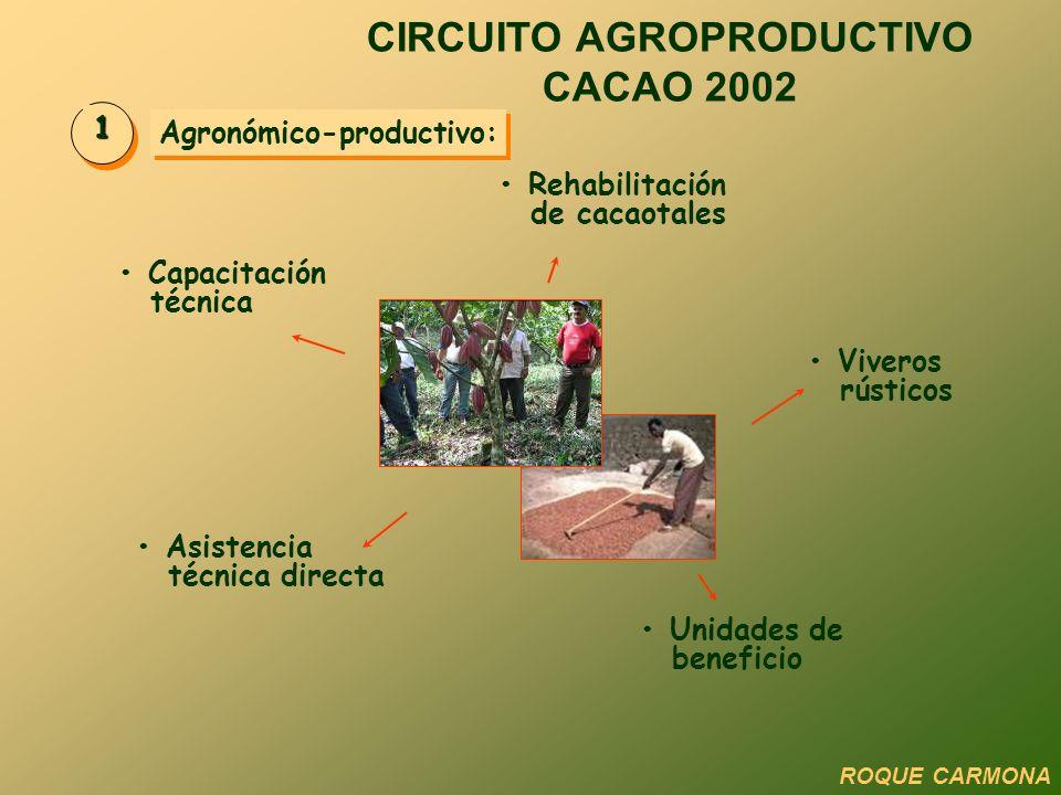 Agronómico-productivo: 1 Rehabilitación de cacaotales Viveros rústicos Unidades de beneficio Asistencia técnica directa Capacitación técnica CIRCUITO AGROPRODUCTIVO CACAO 2002 ROQUE CARMONA