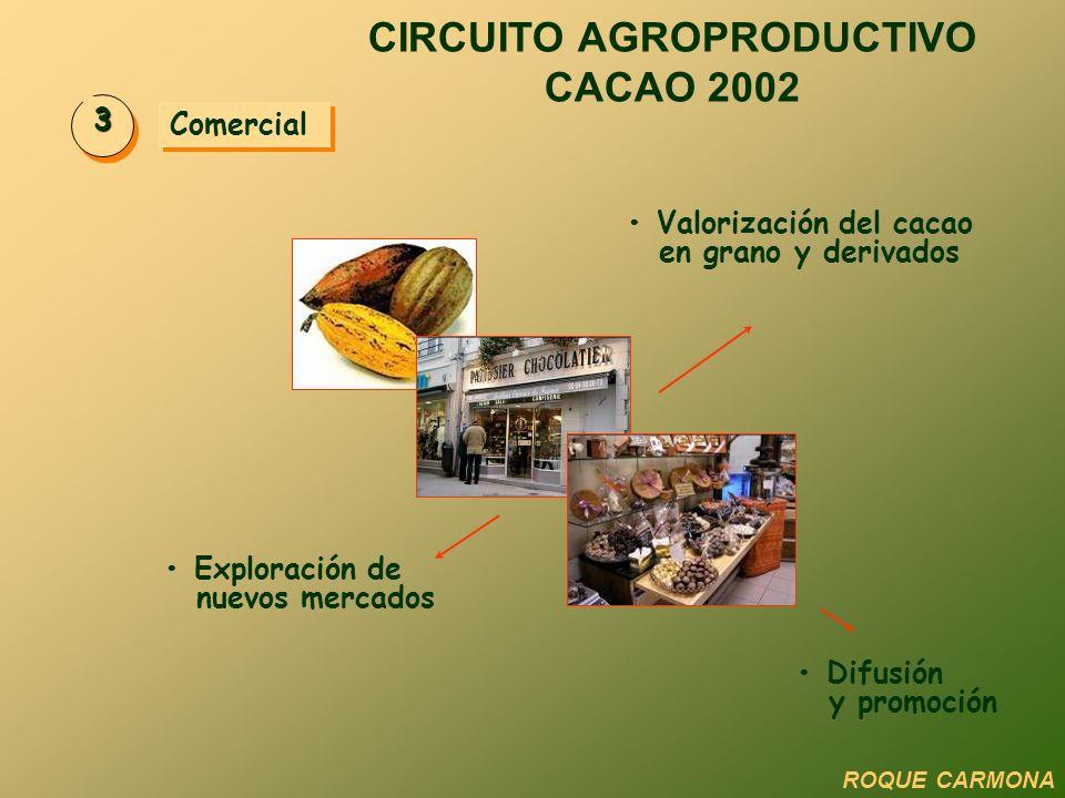Comercial 3 Valorización del cacao en grano y derivados Exploración de nuevos mercados Difusión y promoción CIRCUITO AGROPRODUCTIVO CACAO 2002 ROQUE C