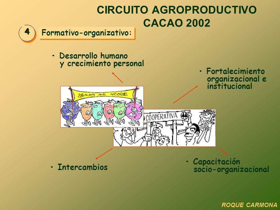 Formativo-organizativo: 4 Desarrollo humano y crecimiento personal Fortalecimiento organizacional e institucional Capacitación socio-organizacional In