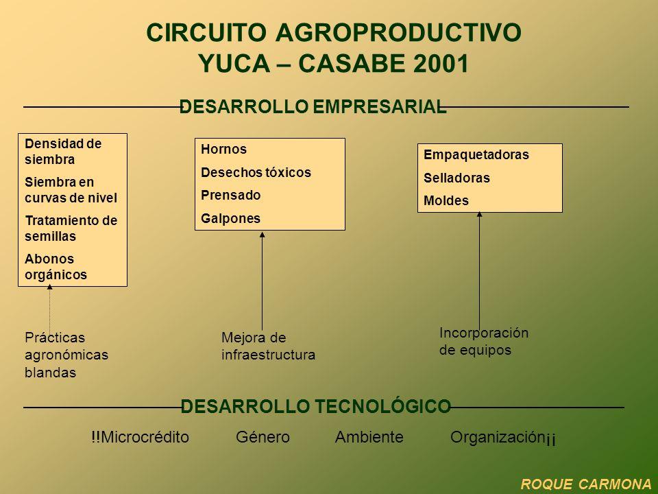 Transformación: 2 Rescate y funcionamiento estable Asistencia técnica y gerencial Capacitación técnica y gerencial CIRCUITO AGROPRODUCTIVO CACAO 2002 ROQUE CARMONA