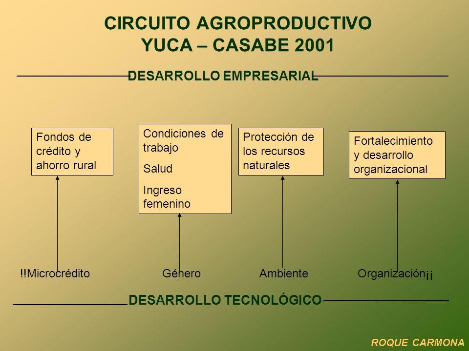 DESARROLLO EMPRESARIAL DESARROLLO TECNOLÓGICO !!Microcrédito Género Ambiente Organización¡¡ Fondos de crédito y ahorro rural Condiciones de trabajo Salud Ingreso femenino Protección de los recursos naturales Fortalecimiento y desarrollo organizacional CIRCUITO AGROPRODUCTIVO YUCA – CASABE 2001 ROQUE CARMONA