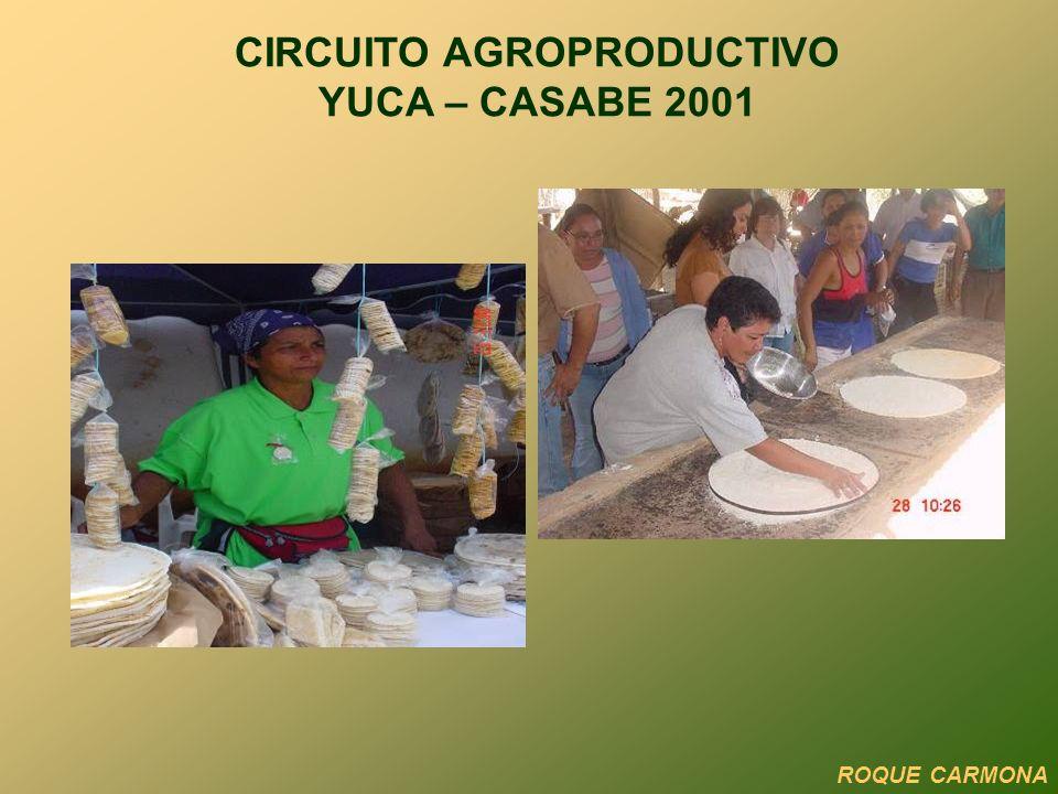 CIRCUITO AGROPRODUCTIVO YUCA – CASABE 2001 ROQUE CARMONA
