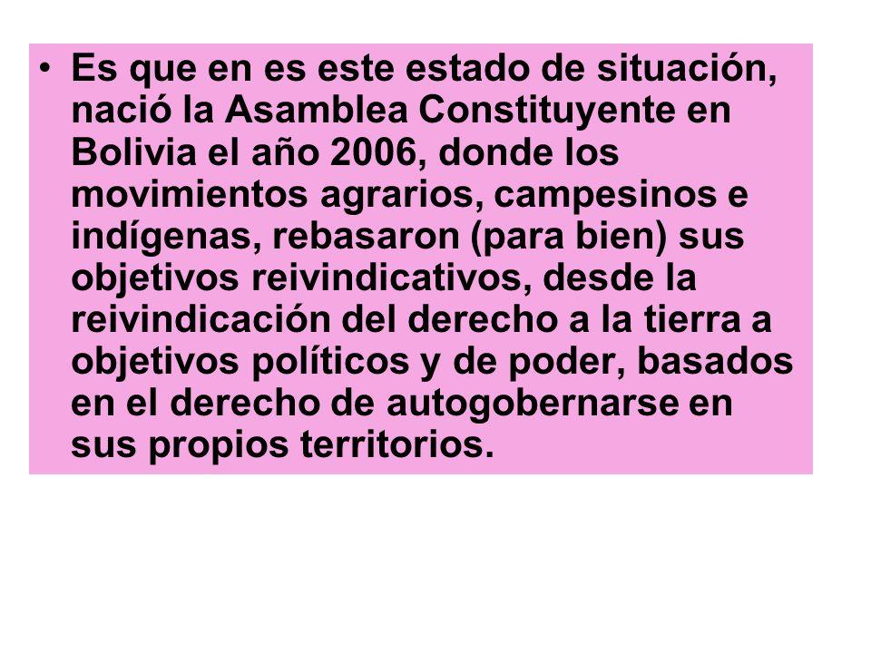 Es que en es este estado de situación, nació la Asamblea Constituyente en Bolivia el año 2006, donde los movimientos agrarios, campesinos e indígenas,