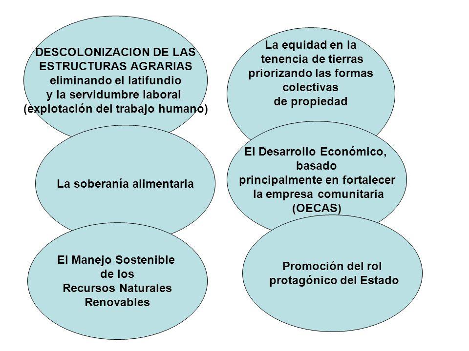 DESCOLONIZACION DE LAS ESTRUCTURAS AGRARIAS eliminando el latifundio y la servidumbre laboral (explotación del trabajo humano) La equidad en la tenenc