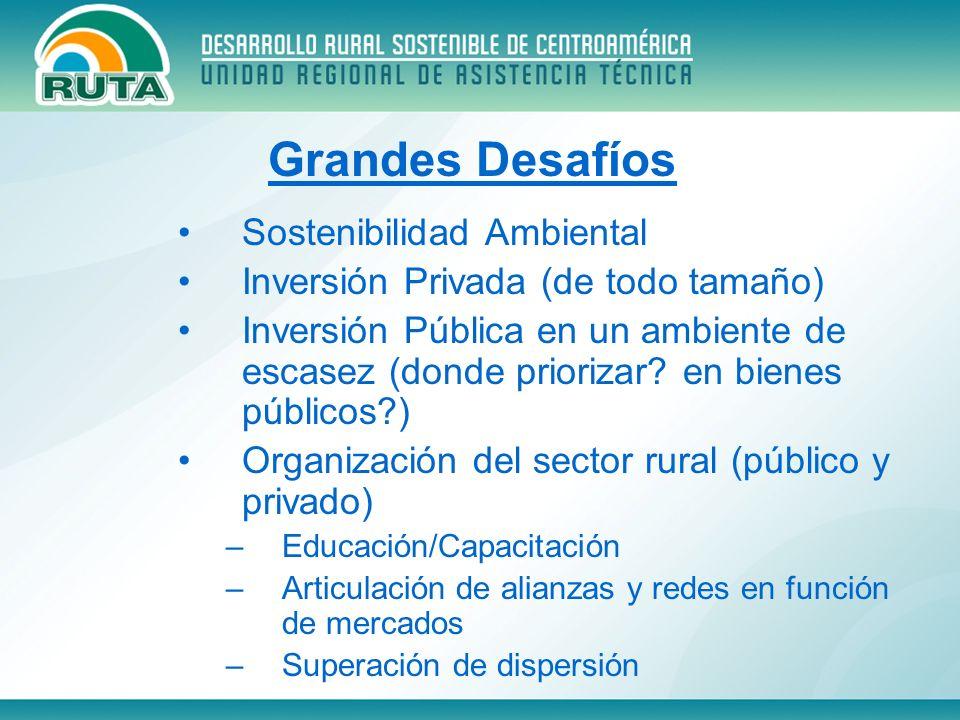 Sostenibilidad Ambiental Inversión Privada (de todo tamaño) Inversión Pública en un ambiente de escasez (donde priorizar? en bienes públicos?) Organiz