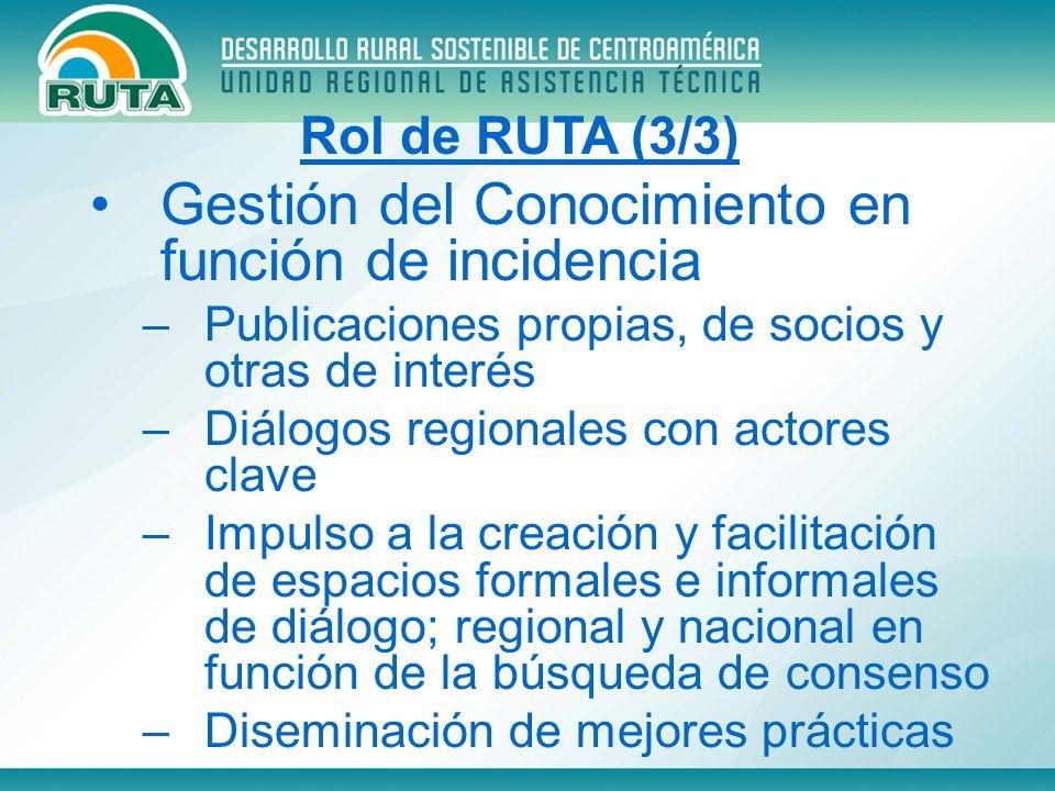 Gestión del Conocimiento en función de incidencia –Publicaciones propias, de socios y otras de interés –Diálogos regionales con actores clave –Impulso