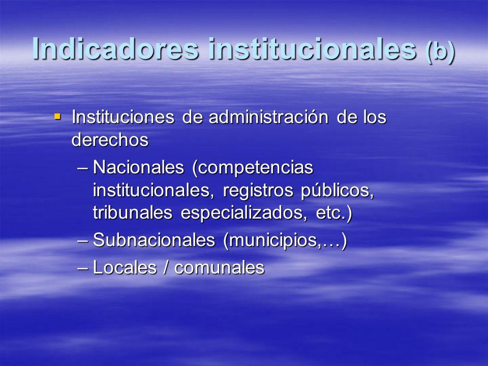 Indicadores institucionales (b) Instituciones de administración de los derechos Instituciones de administración de los derechos –Nacionales (competencias institucionales, registros públicos, tribunales especializados, etc.) –Subnacionales (municipios,…) –Locales / comunales
