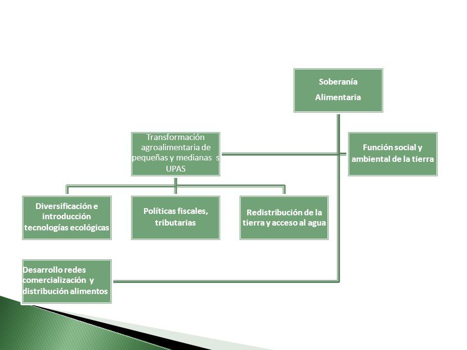 Soberanía Alimentaria Transformación agroalimentaria de pequeñas y medianas s UPAS Diversificación e introducción tecnologías ecológicas Políticas fiscales, tributarias Redistribución de la tierra y acceso al agua Función social y ambiental de la tierra Desarrollo redes comercialización y distribución alimentos