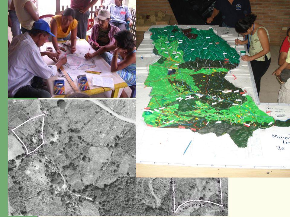 LAS HERRAMIENTAS 3 NIVELES: 1.A nivel de la comunidad mapeo comunitario participativo 2.