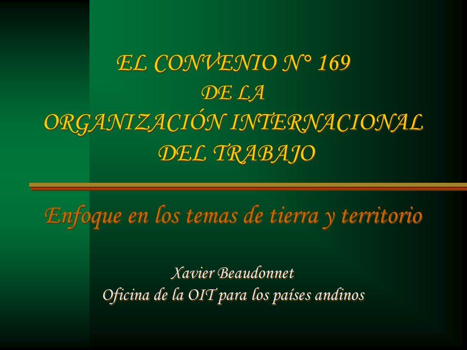EL CONVENIO N° 169 DE LA ORGANIZACIÓN INTERNACIONAL DEL TRABAJO Enfoque en los temas de tierra y territorio Xavier Beaudonnet Oficina de la OIT para l