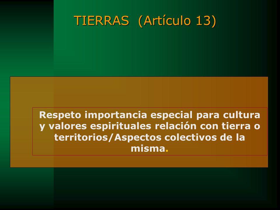TIERRAS (Artículo 13) Respeto importancia especial para cultura y valores espirituales relación con tierra o territorios/Aspectos colectivos de la mis