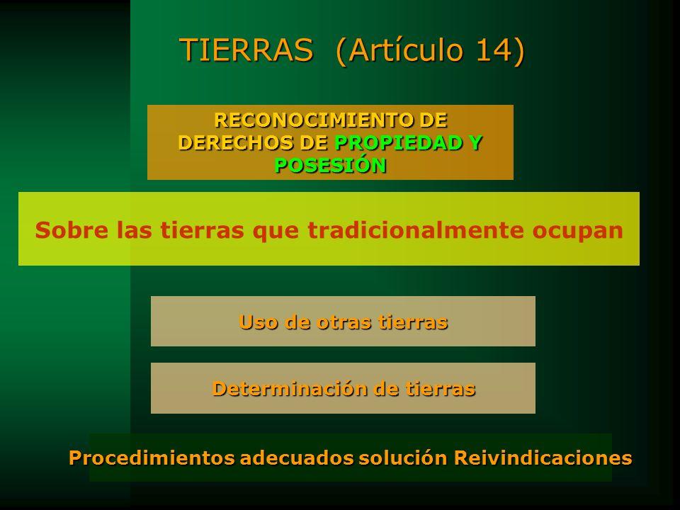 TIERRAS (Artículo 14) RECONOCIMIENTO DE DERECHOS DE PROPIEDAD Y POSESIÓN Sobre las tierras que tradicionalmente ocupan Procedimientos adecuados soluci