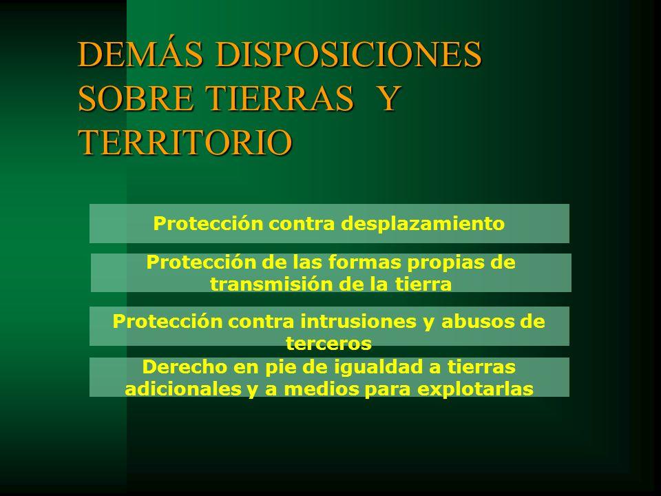 Protección de las formas propias de transmisión de la tierra Derecho en pie de igualdad a tierras adicionales y a medios para explotarlas Protección c