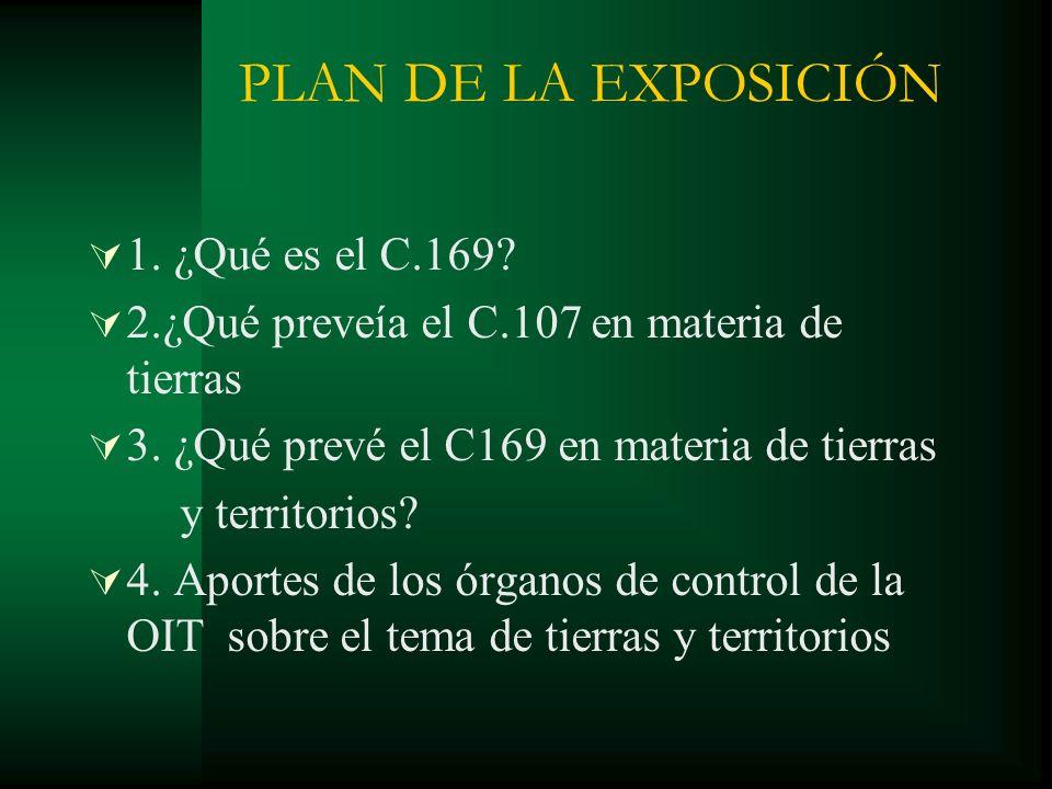 PLAN DE LA EXPOSICIÓN 1. ¿Qué es el C.169? 2.¿Qué preveía el C.107 en materia de tierras 3. ¿Qué prevé el C169 en materia de tierras y territorios? 4.