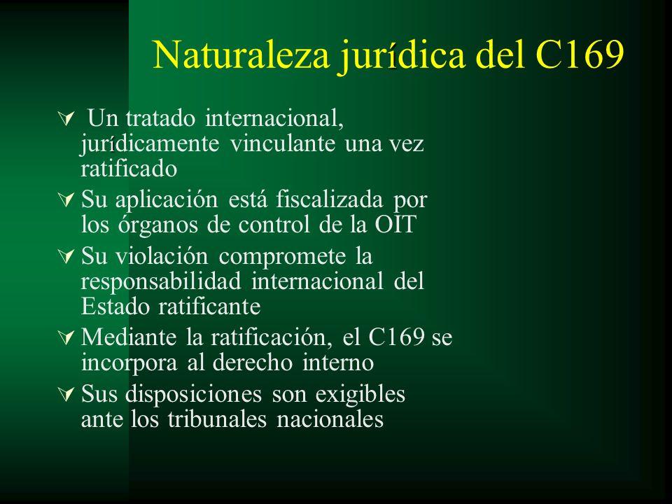 í Naturaleza jur í dica del C169 í Un tratado internacional, jur í dicamente vinculante una vez ratificado Su aplicación está fiscalizada por los órga