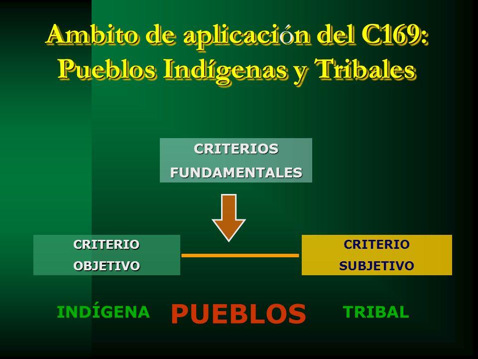 Ambito de aplicacin del C169: Pueblos Indígenas y Tribales Ambito de aplicación del C169: Pueblos Indígenas y Tribales CRITERIOSFUNDAMENTALES INDÍGENA