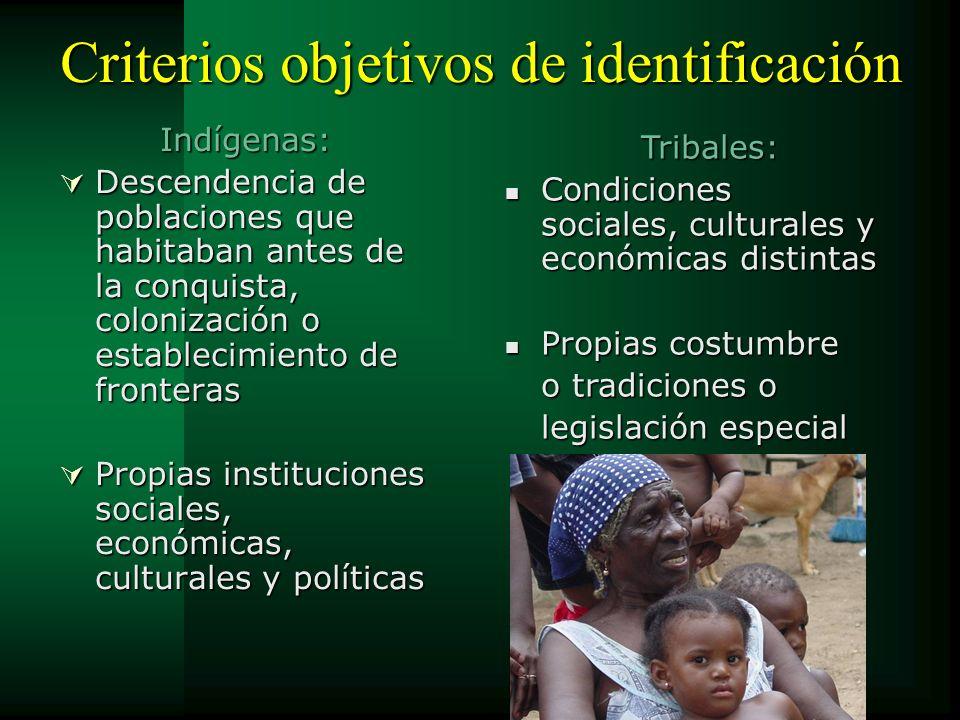 Criterios objetivos de identificación Indígenas: Descendencia de poblaciones que habitaban antes de la conquista, colonización o establecimiento de fr