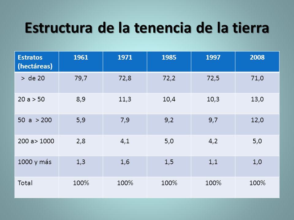 Estructura de la tenencia de la tierra Estratos (hectáreas) 19611971198519972008 ˃ de 2079,772,872,272,571,0 20 a ˃ 508,911,310,410,313,0 50 a ˃ 2005,