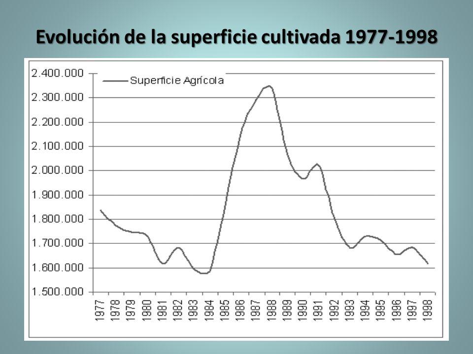 Evolución de la superficie cultivada 1977-1998
