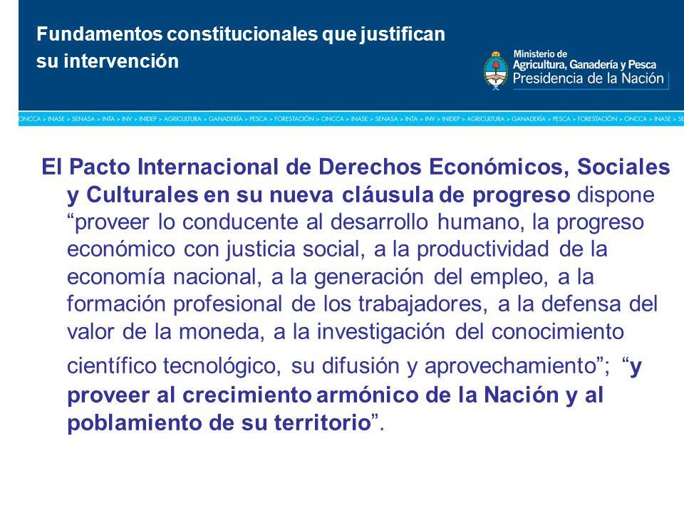 Título: Tipografía Arial / Versión: bold Cuerpo 16 a 18 / Color blanco El Pacto Internacional de Derechos Económicos, Sociales y Culturales en su nuev