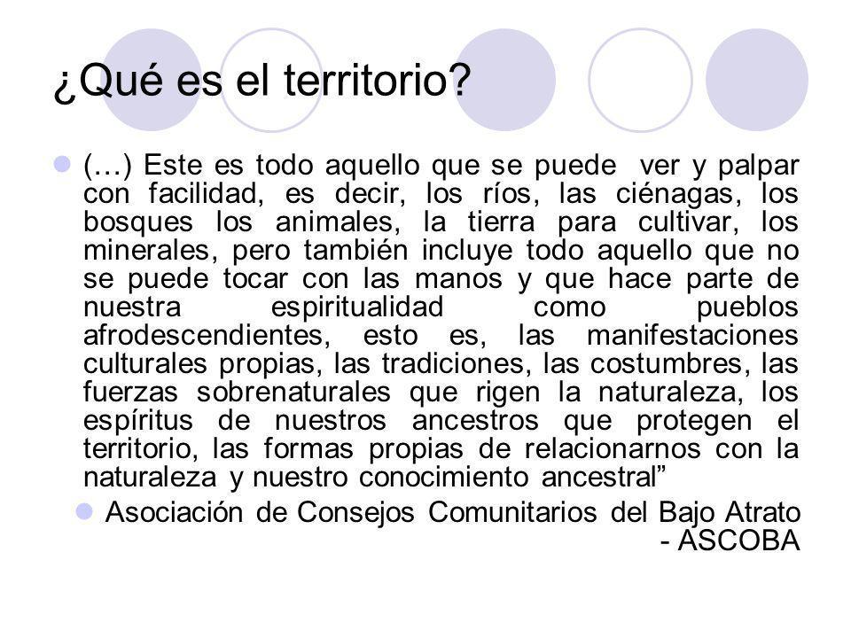 Derecho al territorio (grupos étnicos) Contenido Mínimo: Si las tierras que ocupan estas comunidades son de su exclusivo uso, el Estado deberá reconocerles el derecho de propiedad y de posesión sobre las tierras que tradicionalmente ocupan.