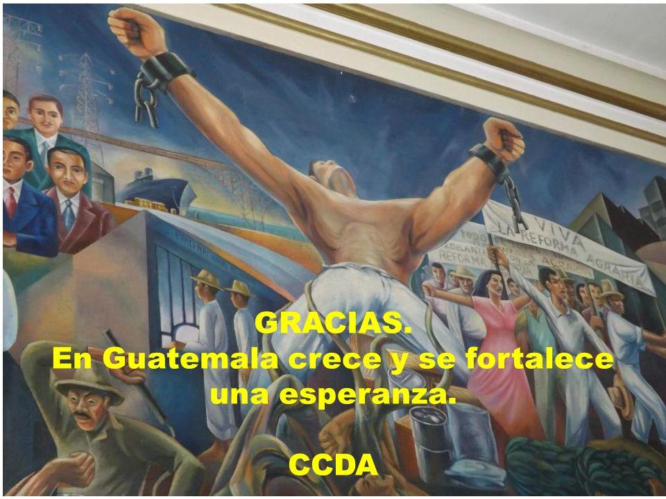 GRACIAS. En Guatemala crece y se fortalece una esperanza. CCDA