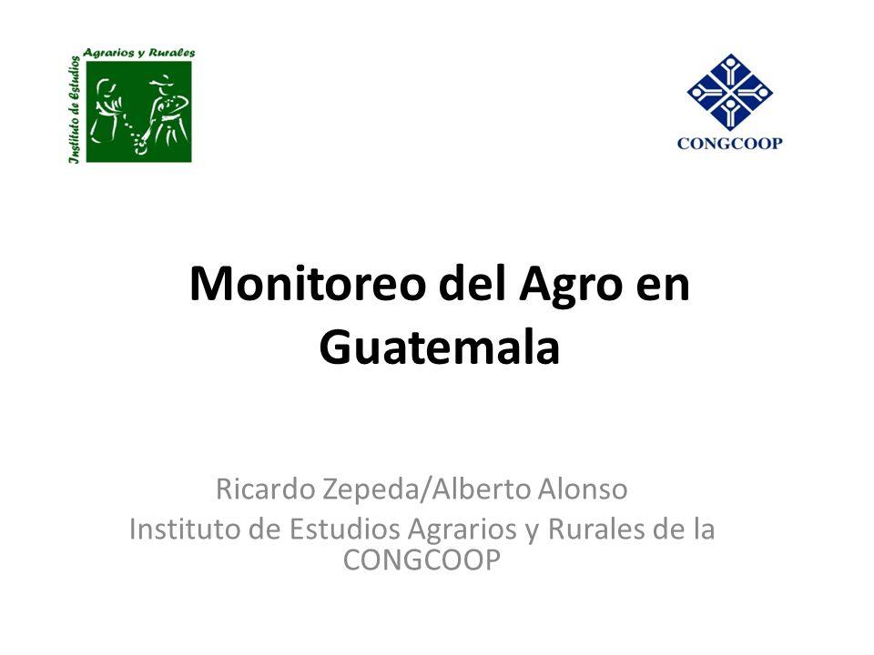 Monitoreo del Agro en Guatemala Ricardo Zepeda/Alberto Alonso Instituto de Estudios Agrarios y Rurales de la CONGCOOP