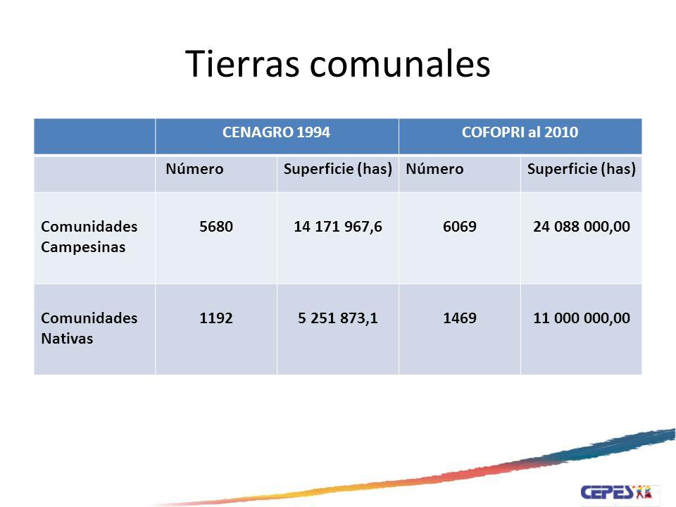 Tierras Comunales Km2.Has.Porcentaje Territorio Nacional 1285,215.60128´521,560100% Comunidades Campesinas 240,88024088,00018.74% 27.30% Comunidades Nativas 110,00011000,0008.56%