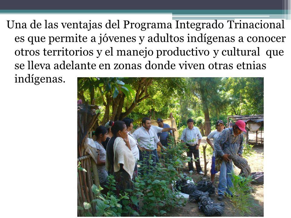 Una de las ventajas del Programa Integrado Trinacional es que permite a jóvenes y adultos indígenas a conocer otros territorios y el manejo productivo