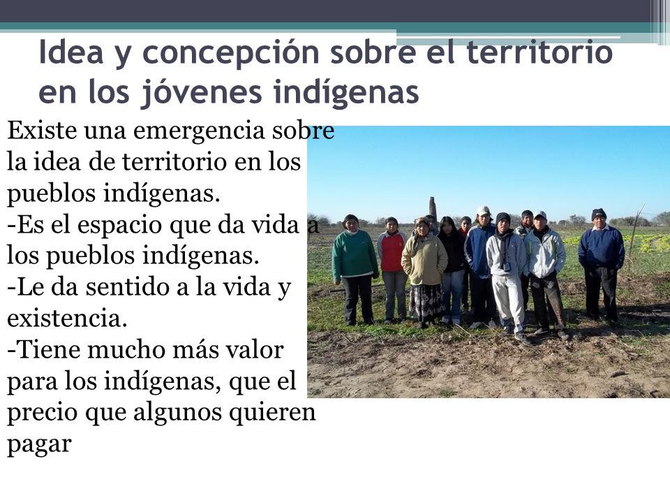 Idea y concepción sobre el territorio en los jóvenes indígenas Existe una emergencia sobre la idea de territorio en los pueblos indígenas. -Es el espa