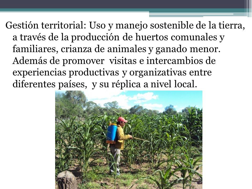 Gestión territorial: Uso y manejo sostenible de la tierra, a través de la producción de huertos comunales y familiares, crianza de animales y ganado m