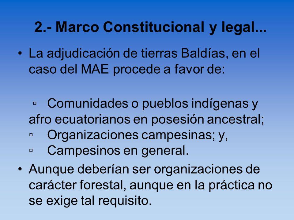 La adjudicación de tierras Baldías, en el caso del MAE procede a favor de: Comunidades o pueblos indígenas y afro ecuatorianos en posesión ancestral;O