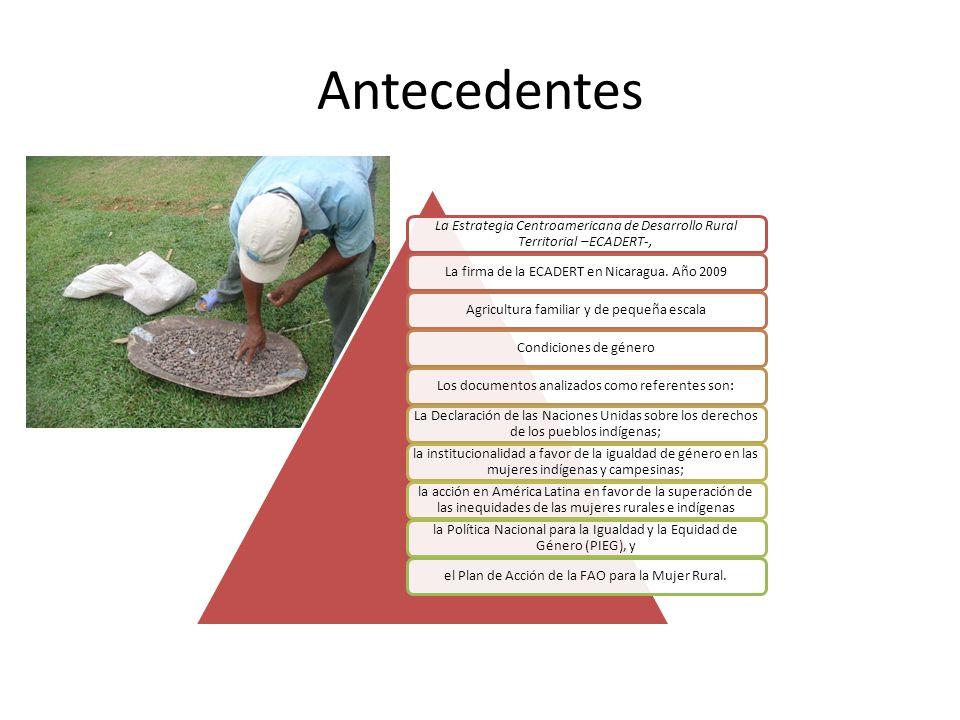 Antecedentes La Estrategia Centroamericana de Desarrollo Rural Territorial –ECADERT-, La firma de la ECADERT en Nicaragua. Año 2009Agricultura familia