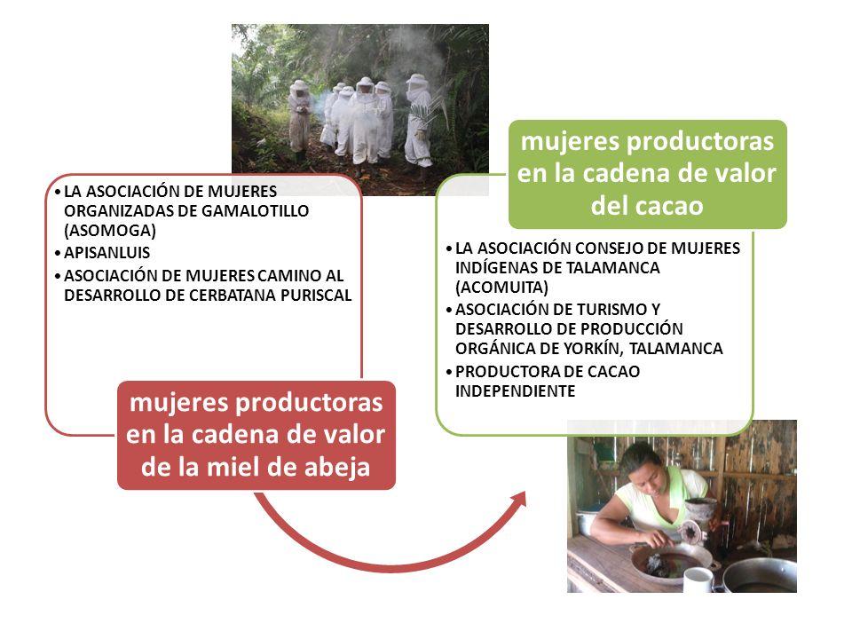 Fundación MUJER FUNDECOOPERACIÓN PARA EL DESARROLLO SOSTENIBLE CONSEJO NACIONAL DE LA PRODUCCION (CNP) CINAT-UNA Eco-LÓGICA Aliados estratégicos