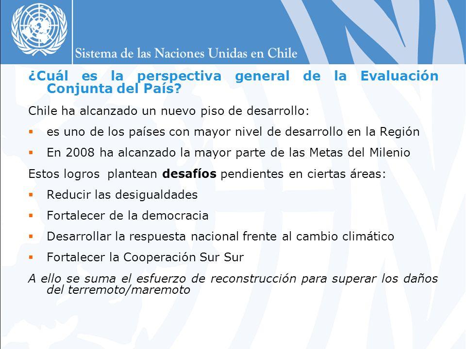 ¿Cuál es la perspectiva general de la Evaluación Conjunta del País.