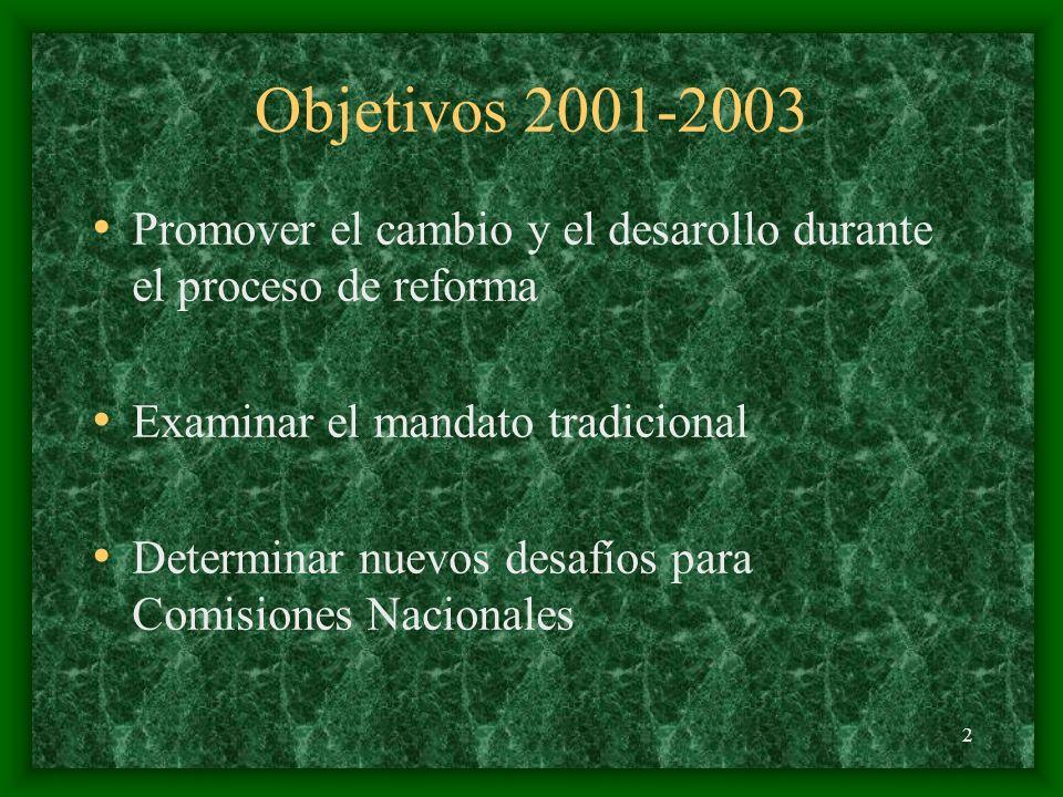 2 Objetivos 2001-2003 Promover el cambio y el desarollo durante el proceso de reforma Examinar el mandato tradicional Determinar nuevos desafíos para Comisiones Nacionales