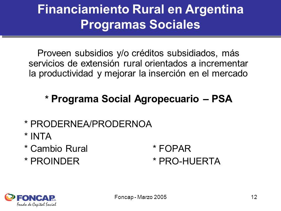 Foncap - Marzo 200512 Financiamiento Rural en Argentina Programas Sociales Proveen subsidios y/o créditos subsidiados, más servicios de extensión rural orientados a incrementar la productividad y mejorar la inserción en el mercado * Programa Social Agropecuario – PSA * PRODERNEA/PRODERNOA * INTA * Cambio Rural* FOPAR * PROINDER* PRO-HUERTA