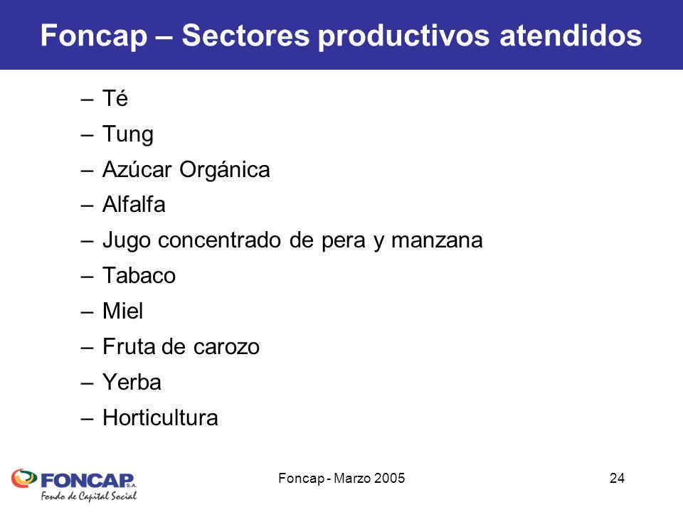 Foncap - Marzo 200524 Foncap – Sectores productivos atendidos –Té –Tung –Azúcar Orgánica –Alfalfa –Jugo concentrado de pera y manzana –Tabaco –Miel –Fruta de carozo –Yerba –Horticultura